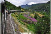 норвегия фьорды железная дорога
